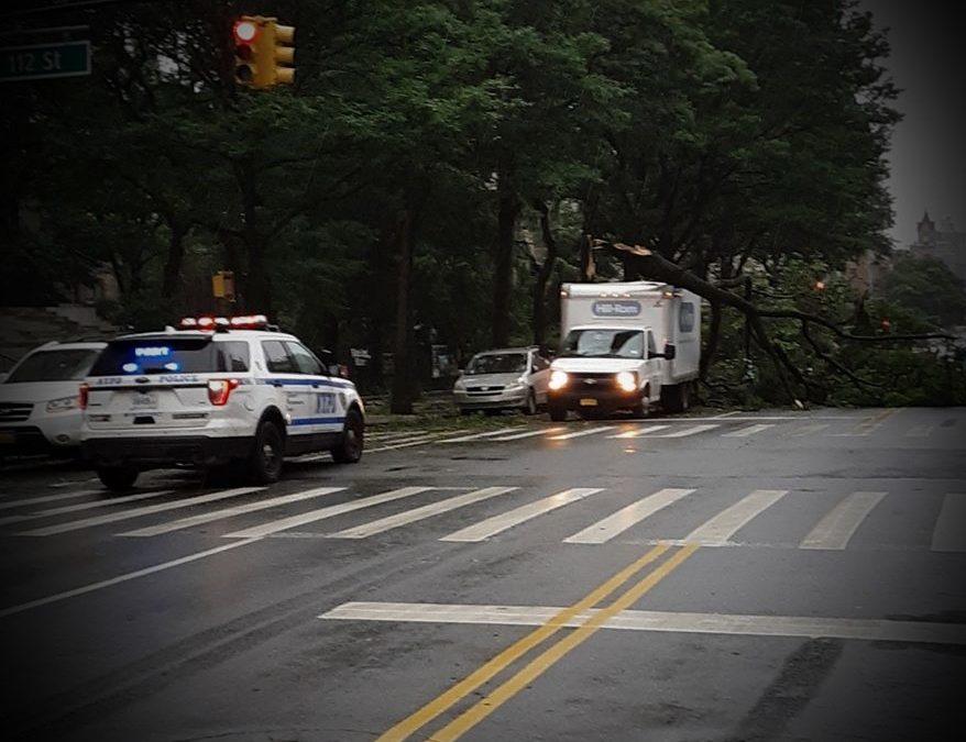 Hurricane, pandemic, rain or shine, New York character remains